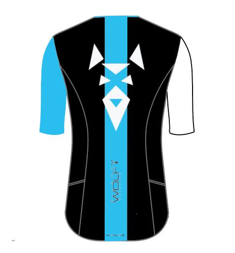 Sleeved Triathlon Top